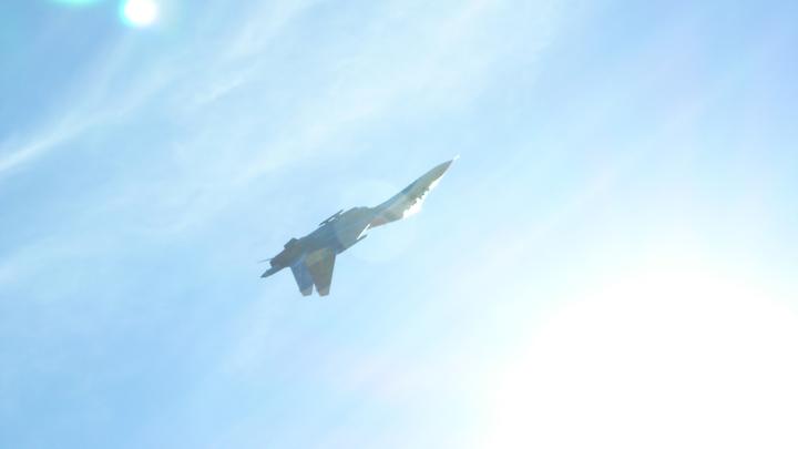 «Зомби-апокалипсис был не такой страшный»: Соцсети высмеяли американцев за их страх перед Су-27