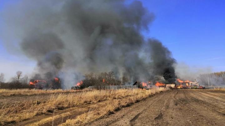 От пала травы загорелось 10 строений в Гусь-Хрустальном районе