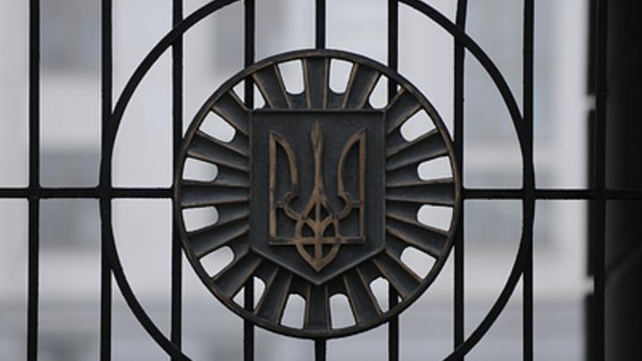 Подхрюкивают. Доказано: Депутат Рады в прямом эфире обвинил власти Украины в высшем свинстве