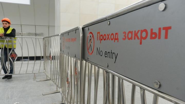 На серой ветке московского метро из-за пассажира произошел сбой в движении поездов