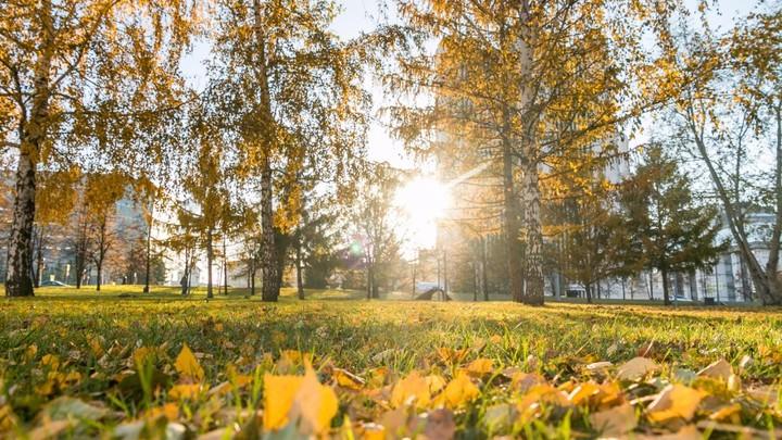 Екатеринбург ищет место храму: Как проходит опрос и какие провокации предшествовали новому этапу дискуссии