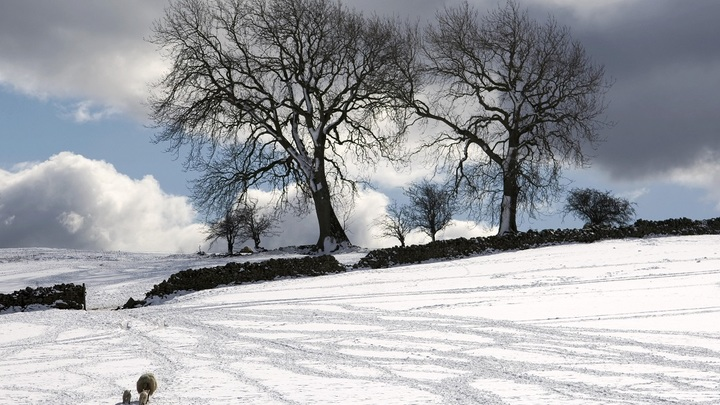 Это еще не снег: Синоптики разглядели в подмосковных осадках ледяную крупу