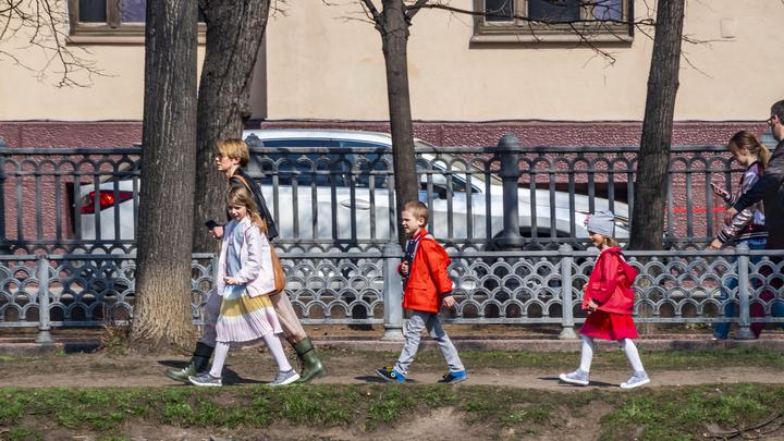 Сроки школьных каникул в Новосибирской области могут изменить из-за коронавируса