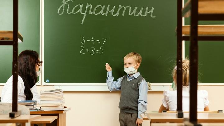 Как будут учиться школьники в Самарской области после выборов: могут закрыть и ввести карантин