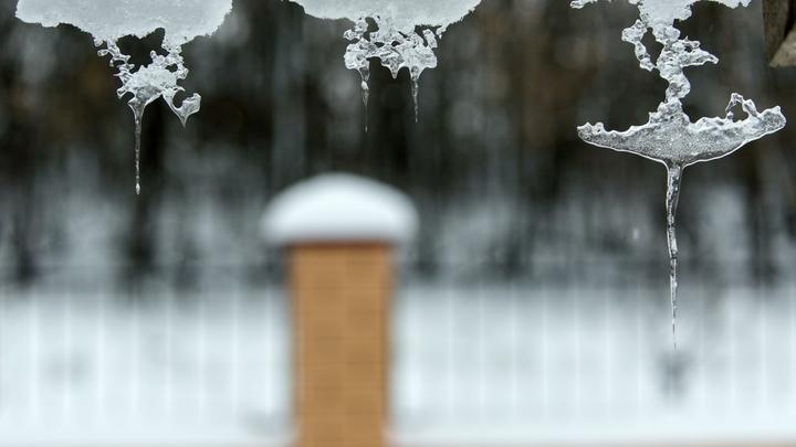 Пора утепляться: Синоптик предупредила москвичей о заморозках до минус 8