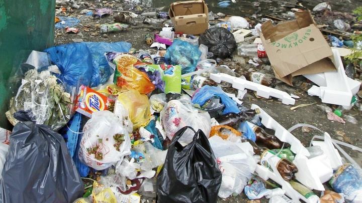 Организатора «мусорного» протеста в Волоколамске выпустили на свободу