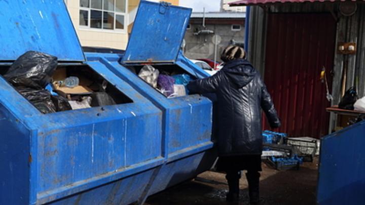 Чиновник выбросил в мусорку живую больную собаку: Когда доставали, даже поскуливала