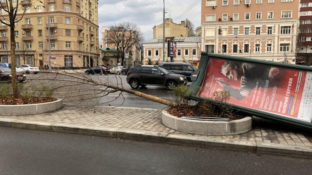 ВМЧС поведали обущербе отсильного урагана в столице