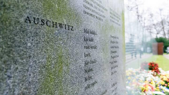 Странно, что пиццу не заказывали: Журналистке устроили историческую порку за узников Освенцима
