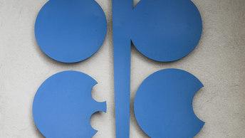 Участники ОПЕК+ рассматривают возможность инвестировать в отрасль