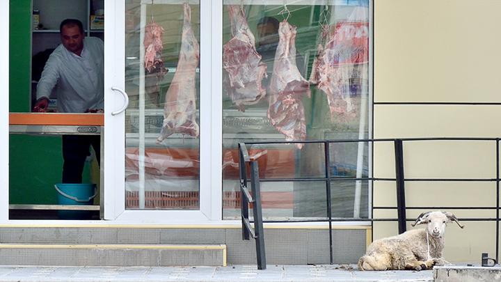 Мне нужно свежее мясо: азербайджанцы в Удмуртии издеваются над русскими девушками. Часть 2