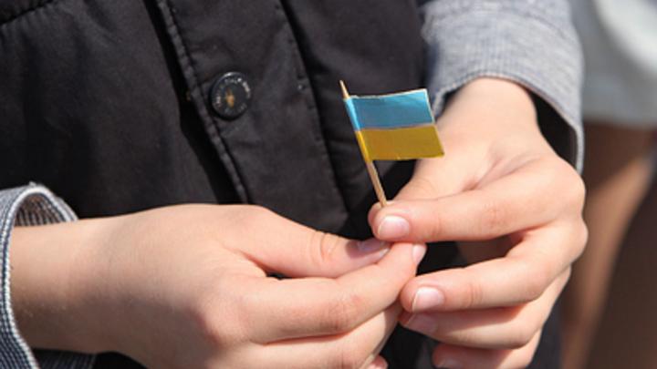 Детей солдат ВСУ в Прибалтике учат партизанской войне - СМИ