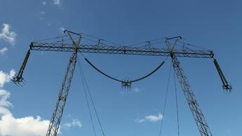 Последнийв программе возрождениясокол-балобан погиб у линии электропередачи