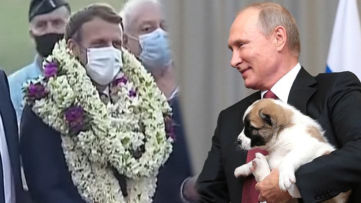 Не цветочный Макрон: Как Путин надел костюм аозай и принял самые гнусные и трогательные подарки