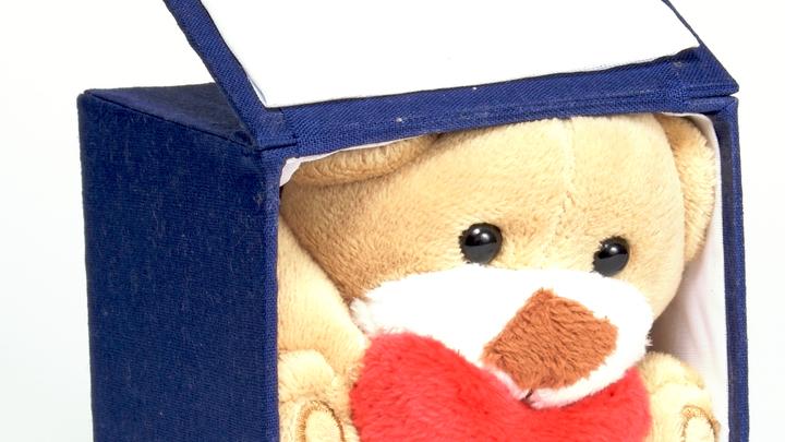 В Тольятти ищут похитителей игрушек: жертвами воров стали мишки и зайчики