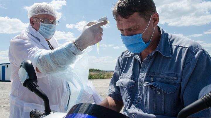 Вторая волна коронавируса в Ростовской области: Когда ждать, прогноз заболеваемости на август