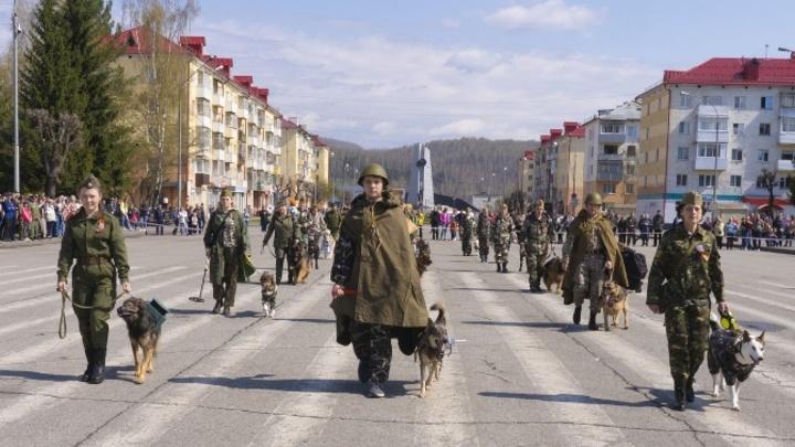 Четвероногие полки прошлись по улицам Кузбасса в День Победы