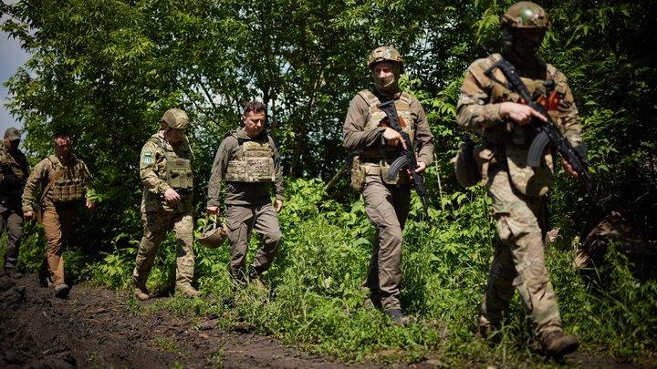 Глазьев поделился догадкой о судьбе пропавших бойцов ВСУ: Для клиник ЕС и США