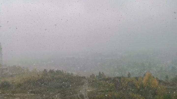 Выпавший в Новосибирске первый снег сняли на видео