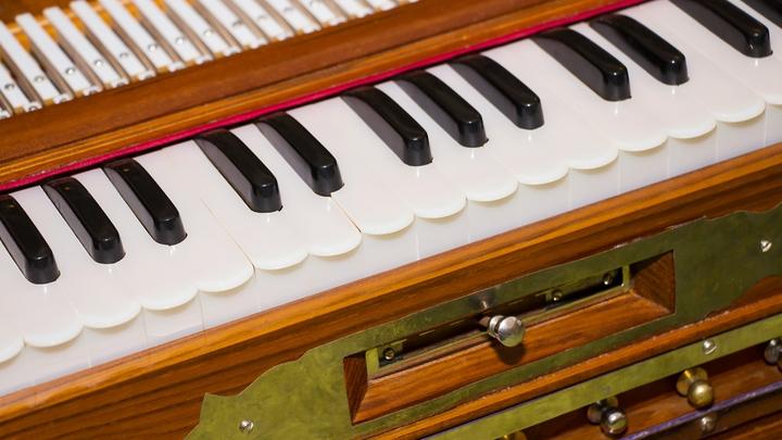 Х музыкальный фестиваль Органные вечера в Кускове пройдет с 25 мая по 31 августа