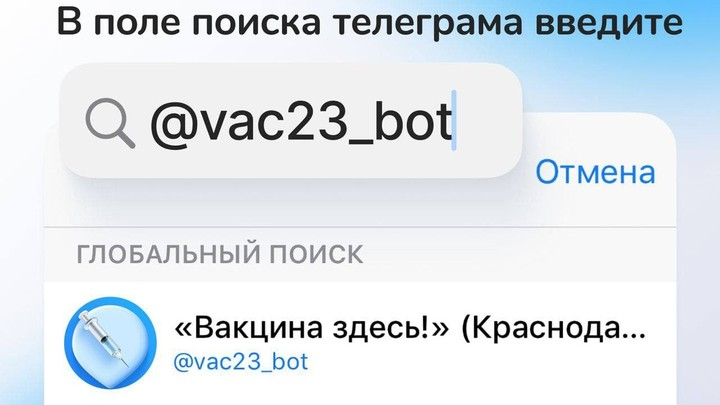 Коронавирус в Краснодарском крае на 29 июля: Стало известно, как работает автоматический чат-бот