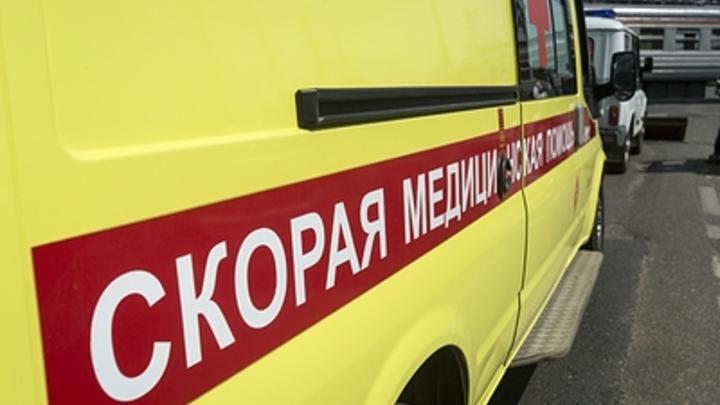 Массовое отравление детей крысиным ядом в Новосибирской области: Одноклассник угостил малышей таблетками