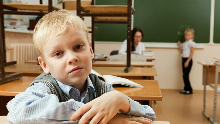 Кто такая почтовая кривоногая и как выглядит пение лягушки: Родители оказались бессильны перед школьными заданиями