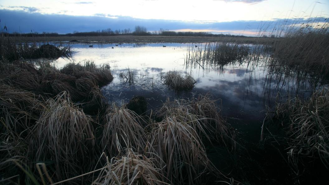 Свердловская генпрокуратура выявила 148 источников вредных выбросов напредприятии-гиганте