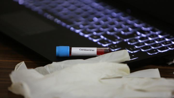 Иммунитет к коронавирусу выработают не все? Названа группа людей