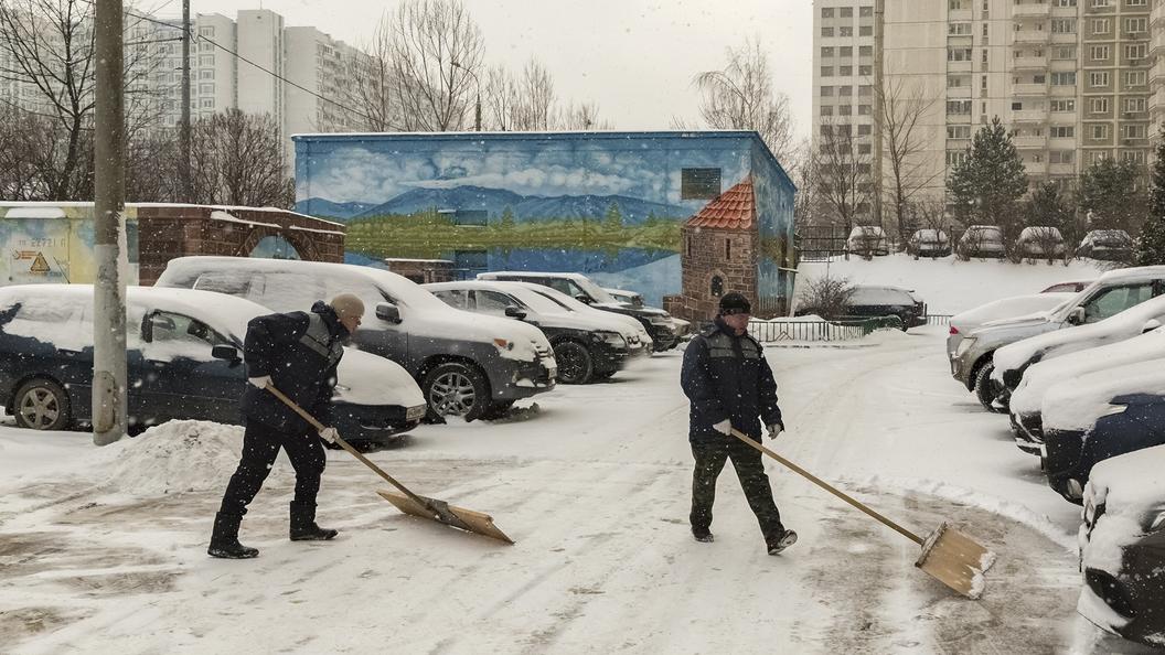 Аномальный снегопад встолице вызвал в РФ ажиотажный спрос налопаты