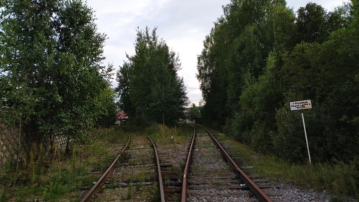 Электрички из Нижнего Новгорода перестанут ходить по Арзамасскому направлению