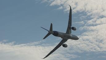 Летевшему в Ирландию самолету пришлось экстренно сесть из-за взгляда дьявола