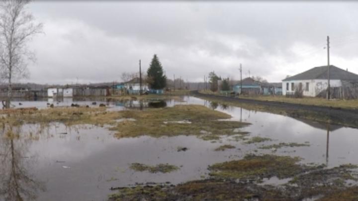 В Новосибирской области ожидаются сильные паводки
