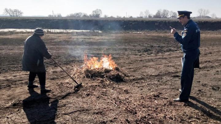 Ситуация с пожарами в Новосибирской области на 28 апреля 2021 года