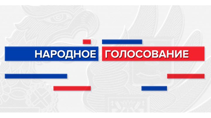 Народное голосование: делаем русский выбор