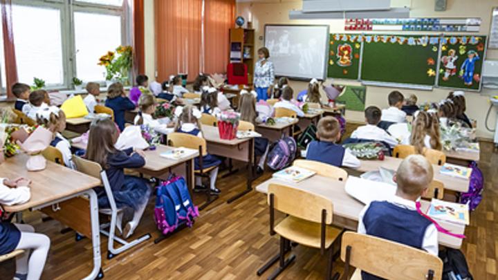 В Курганской области пустили слух об отмене дистанта у школьников