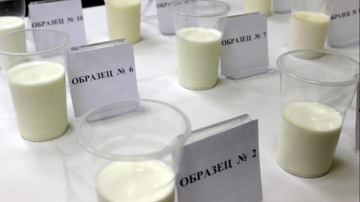 Колбаса без белка и молоко с антибиотиками: итоги проверки нижегородского Россельхознадзора