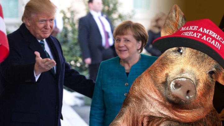 США ставят Германию перед выбором - подчиниться или восстать