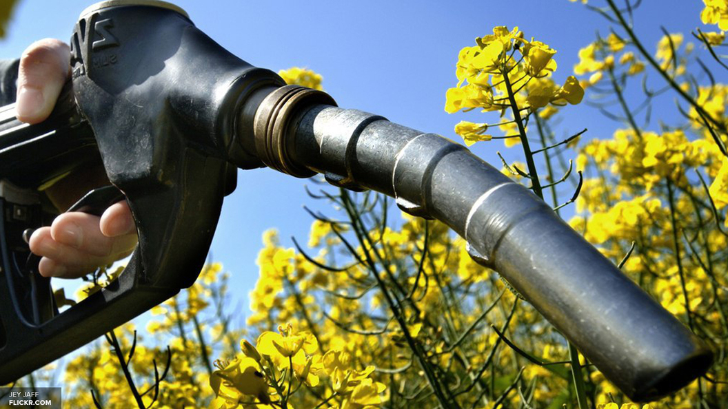 Роснефть поставит на Украину 140 тысяч тонн дизельного топлива в марте