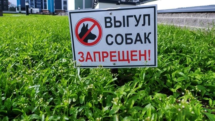 Власти Кемерова опубликовали список мест, запрещенных для выгула собак