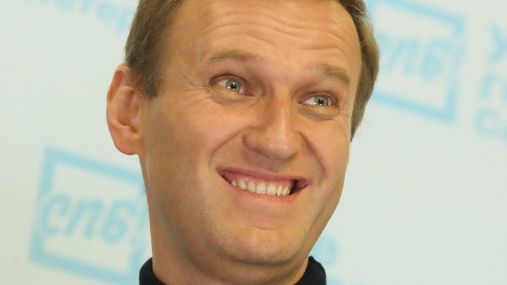 Не брезгует никакими деньгами: Клинцевич оценил заработок Навального на фейковых расследованиях