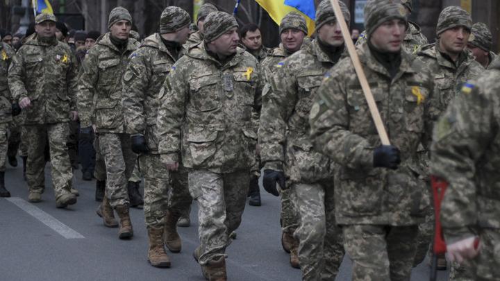 Посадить за решетку: Бастрыкин дал жесткую оценку реабилитирующим нацизм на Украине