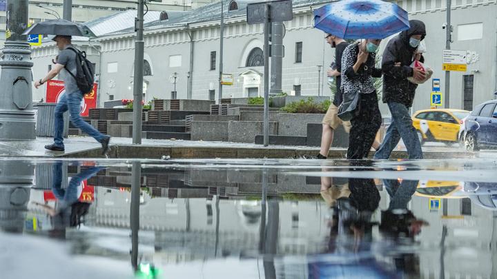 Облачно, прохладно и дождливо: погода в Петербурге на 16 сентября