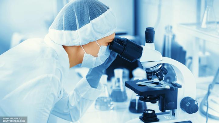 Ученые рассказали, какой продукт снизит риск появления рака у женщин