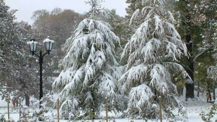 Гребень антициклона: На Москву идут похолодание и зимние морозы