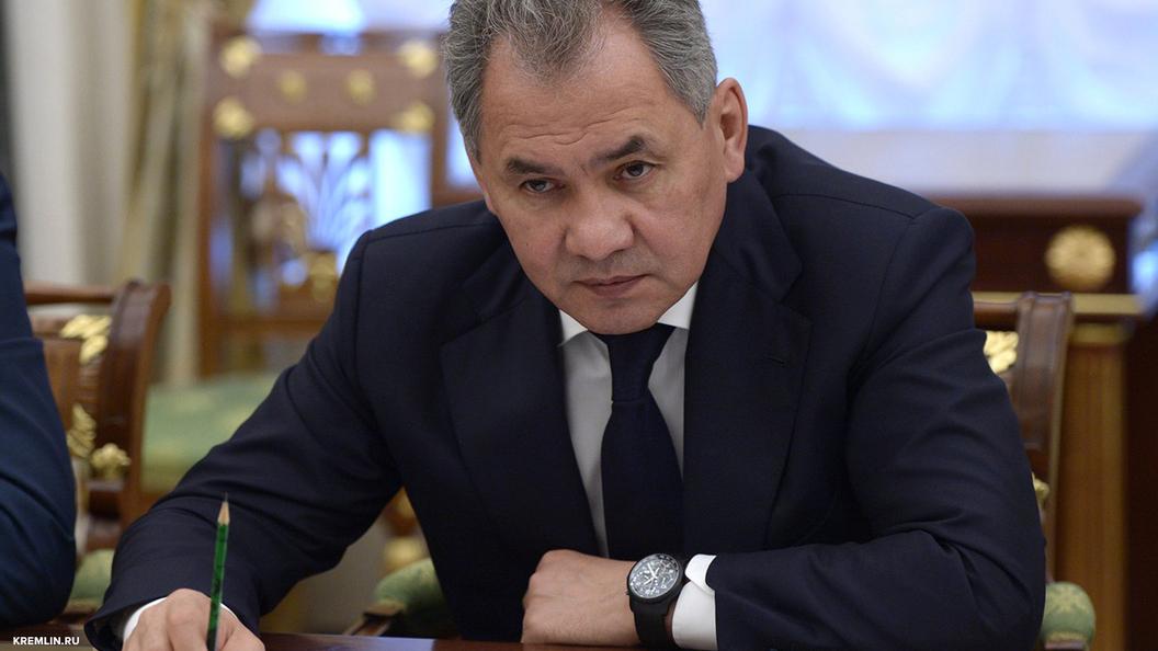 Сергей Шойгу: Полицейская миссия НАТО создает угрозу безопасности России