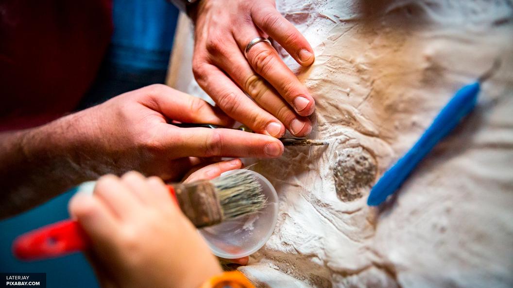 Открытие антропологов: ДНК древних людей можно изучать по известняку