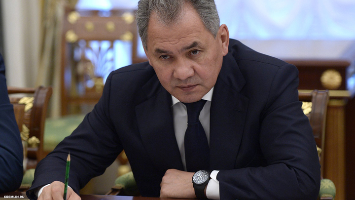 Шойгу прилетел в Каир на переговоры о военно-политическом сотрудничестве