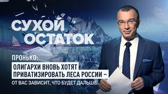 Пронько: Олигархи вновь хотят приватизировать леса России – от вас зависит, что будет дальше