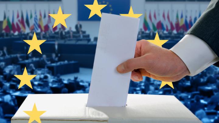 Выборы в Европарламент: Кошмарный сон Меркель и интересы России